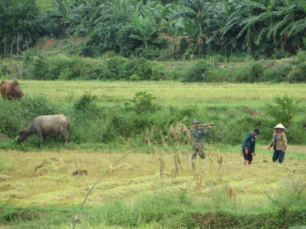 More rural farmers in the Phong Nah area.