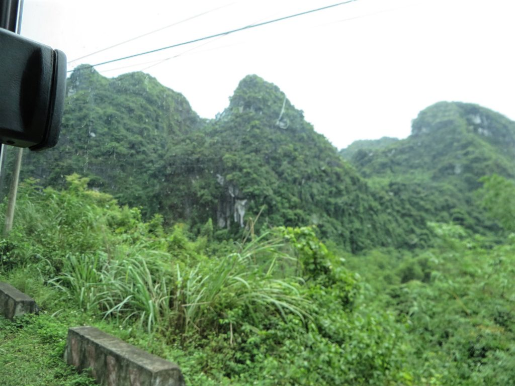 The jungle and national park on Cat Ba Island.
