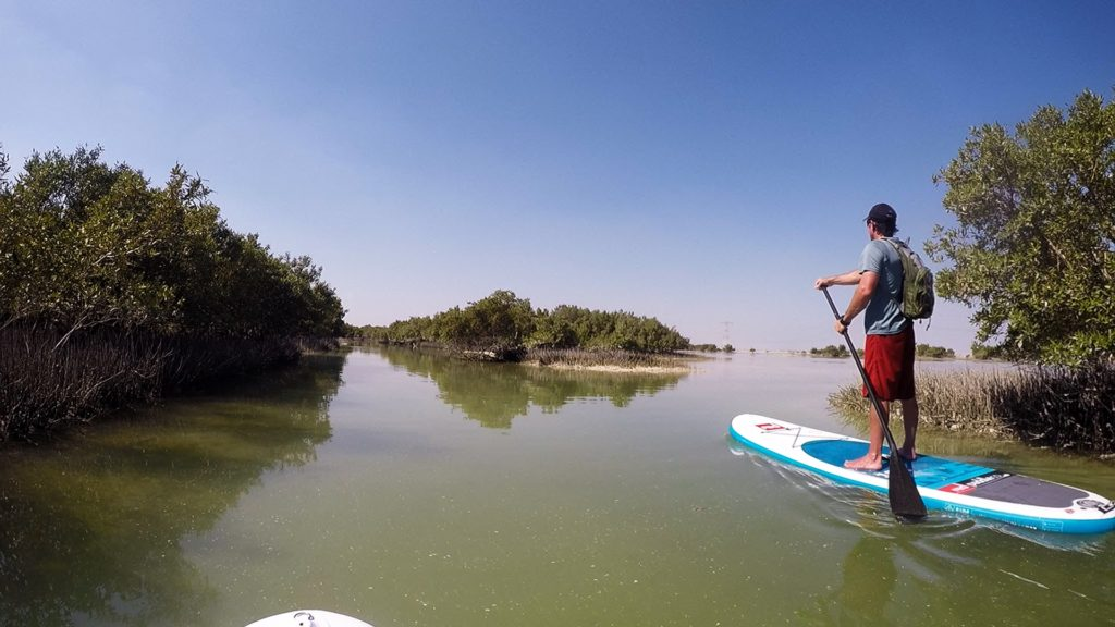 A paddle in the mangroves opposite Kite Beach.