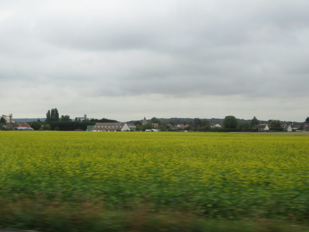 The French countryside as it flies by the windscreen.